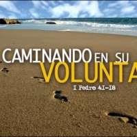 La Voluntad de Dios - Estudios